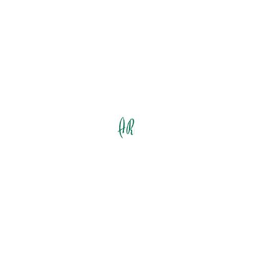 Cinta Durable para identificador portanombres. Longitud 44cm. Pack 10 cintas Verde